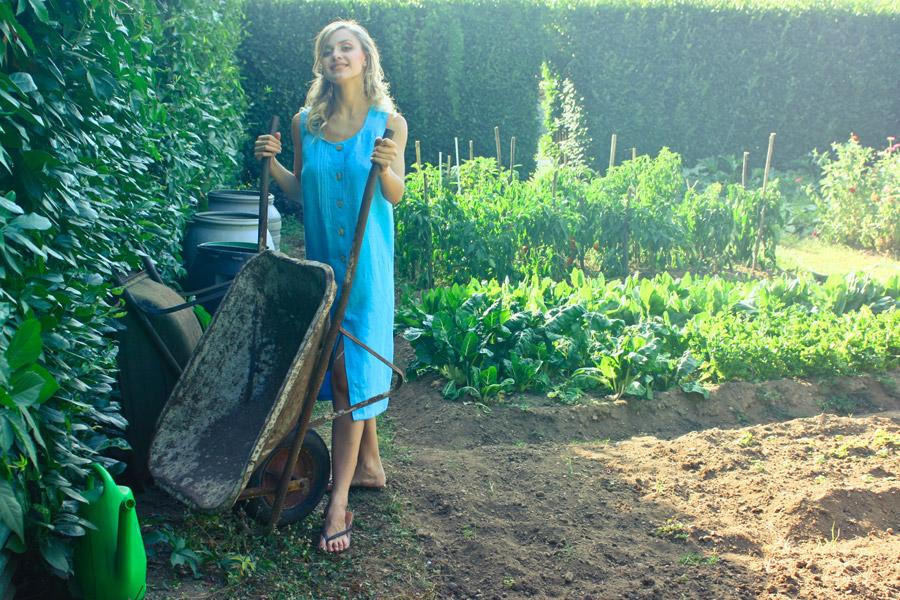 家庭菜園は思っていたより辛かった(笑)
